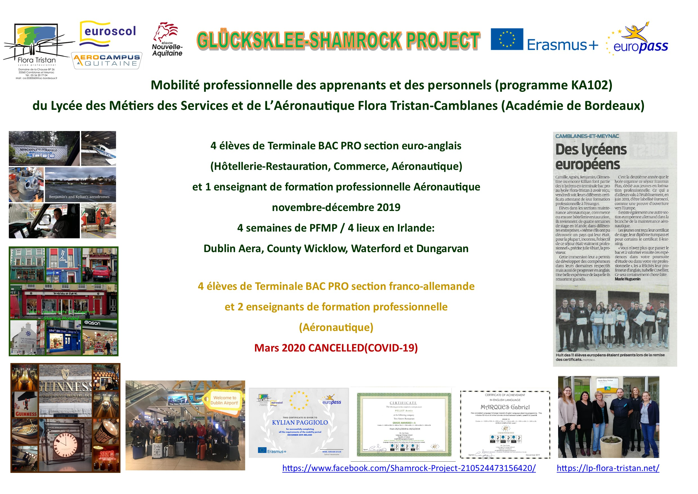 valorisation glucksklee shamrock project 2019